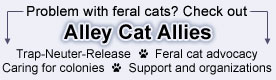 Alley Cat Allies: Feral Cats