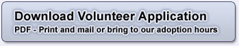 Volunteer Application - PDF